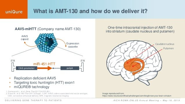 Updates on the clinical studies targeting HTT by Uniqure: AMT-130